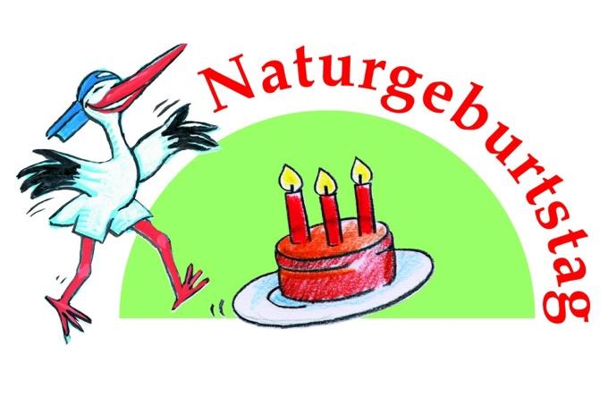 Party Kekse mit Dinosaurier Deko Ideen zum Geburtstag feiern mit Kindern