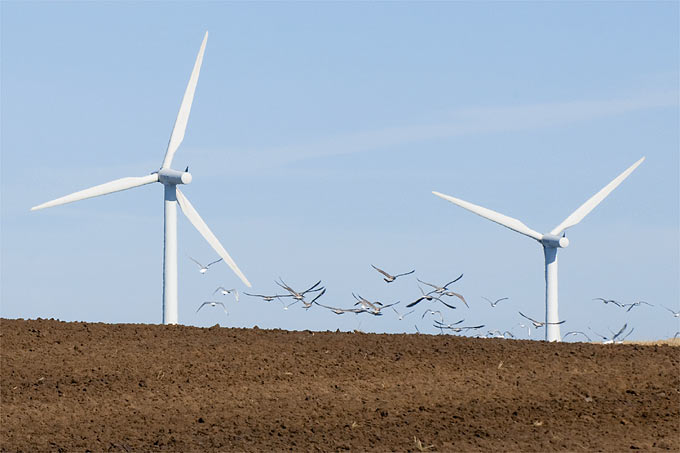 Windräder in Agrarlandschaft - Foto: EC/Laurent Chamussy